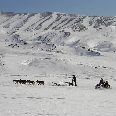 Adventure  on dog-sleds  to the upper  part  of  the river  Kitilgina  of  Milkovsky district, Central Kamchatka